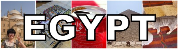 YQ in Egypt