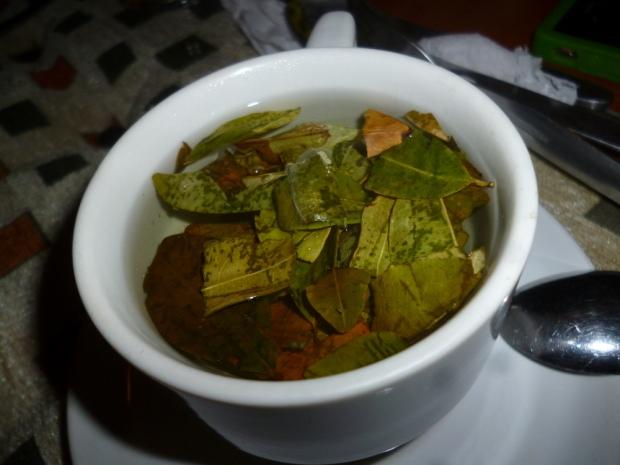 coca tea from peru